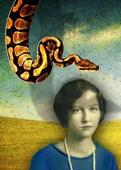 snake-Amy