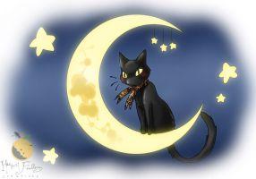black_cat_plush___dream_image_by_harvestfeathers-d32ud6u